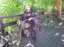 2009-08-30 Nistertal zondag